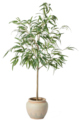 Target 73″ Artificial Weeping Eucalyptus Tree in Pot – Threshold™